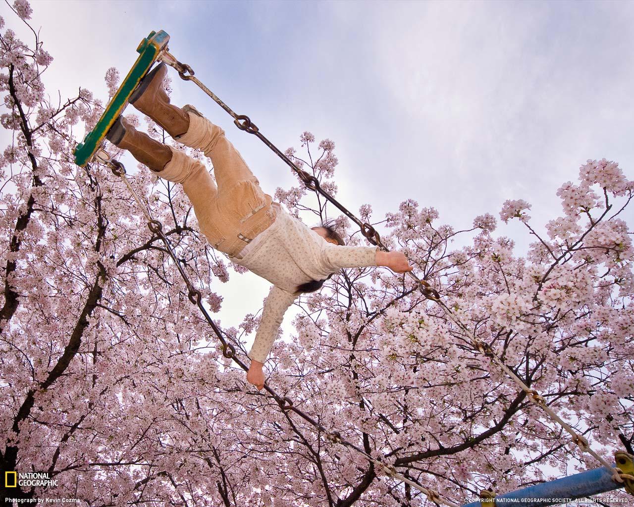 Японка на качели 16 фотография